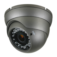 2.1MP Eyeball 2.8-12 (Grey)